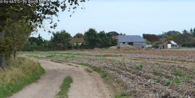 photo of farm track near North Hayling